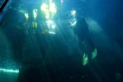 kapstadt-aquarium-007