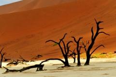 reise_pioniere_namibia_013