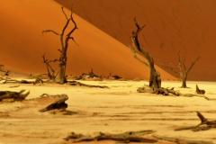 reise_pioniere_namibia_014