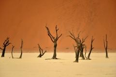 reise_pioniere_namibia_015