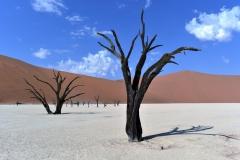 reise_pioniere_namibia_016