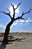 reise_pioniere_namibia_017
