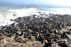 reise_pioniere_namibia_019